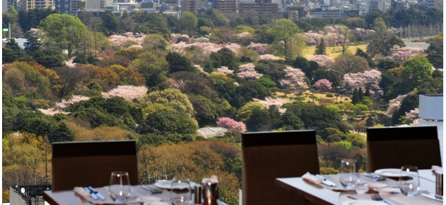 Gorgeous hanami hotel lunches