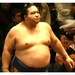 5 sumo wrestlers to keep an eye on