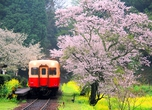 Kominato Railway: even the train looks friendly. Photo: Pixta