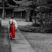 Photo of the day: Red in Meiji-jingu